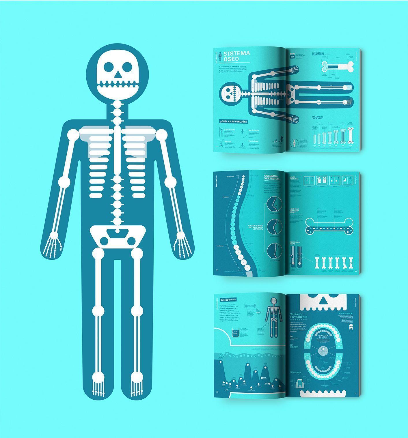 Anatográfico - salud visual