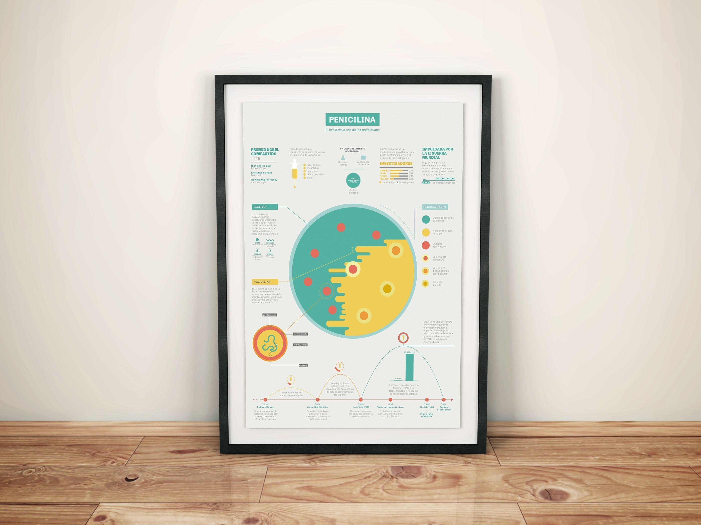 infografia-penicilina
