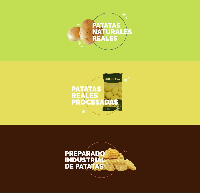 """""""Pollitos"""
