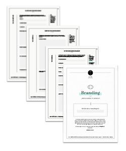 briefing-branding